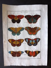 Diderot C1790 Antique Hand Col Print. Butterflies 30